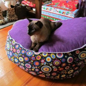 Multicircle Purple Bean Bag Chair with Harness
