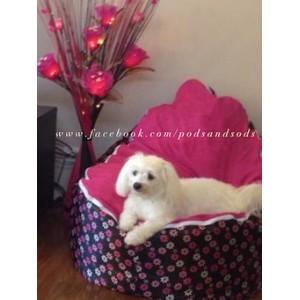 Pink Daisy Bean Bag Chair